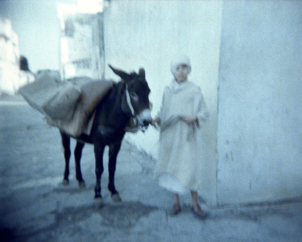 L'enfant et son âne