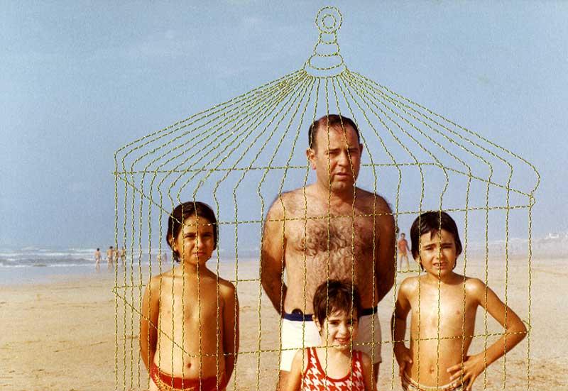 L'adolescence, La cage dorée