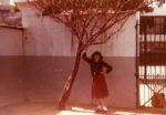 L'adolescence, L'arbre brodé