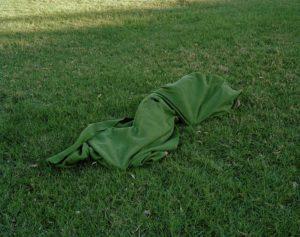 Vagrant Asleep In A Park