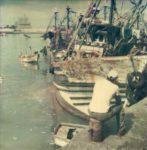 Casablanca, Le port de pêche #29